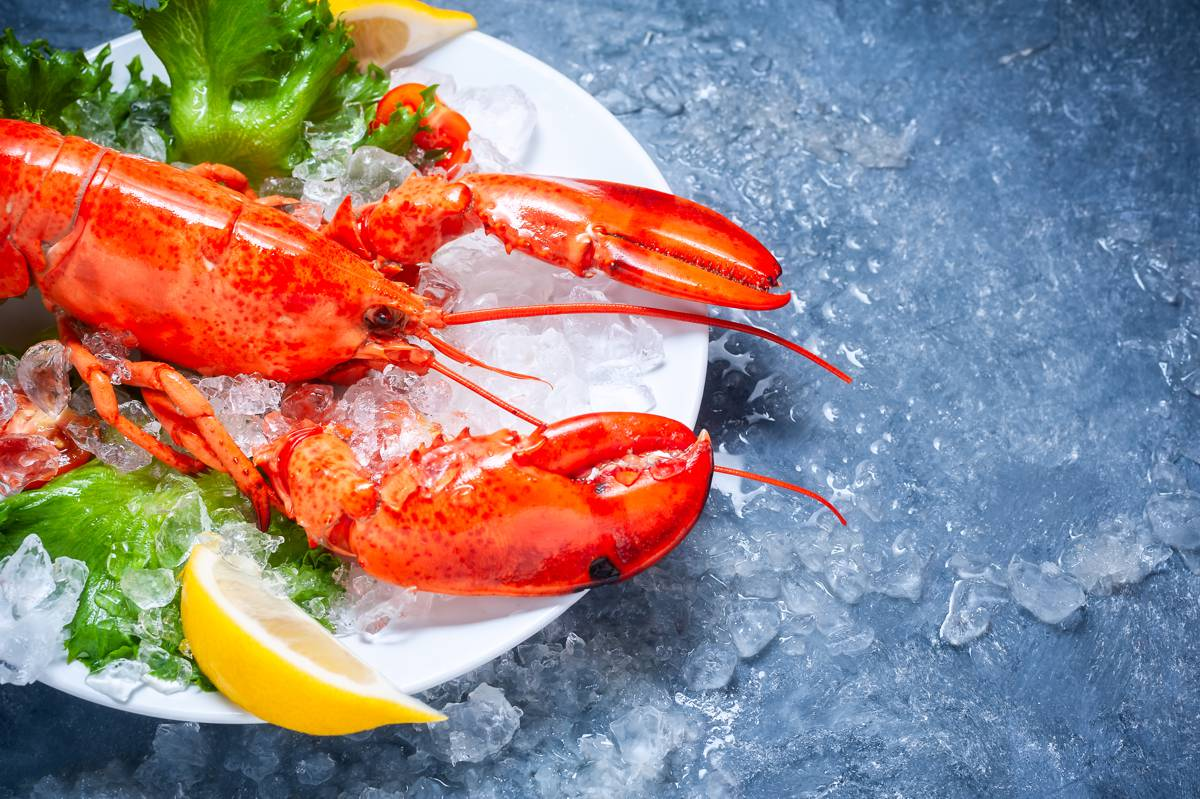 whole maine lobster with tomato slices lemon